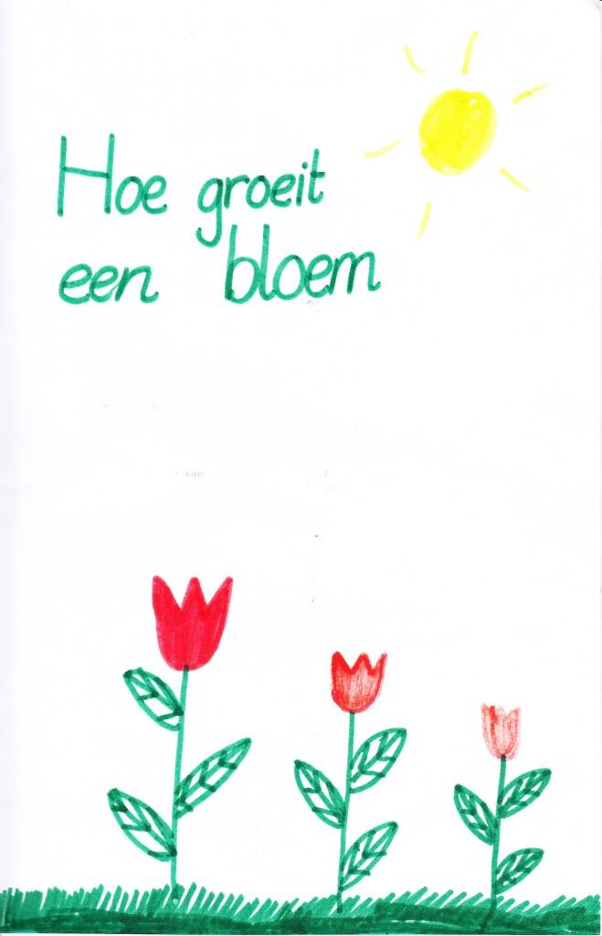 Hoe_groeit_een_bloem